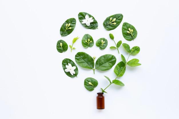 Bouteille d'huile essentielle avec fleur de jasmin et feuilles blanches.