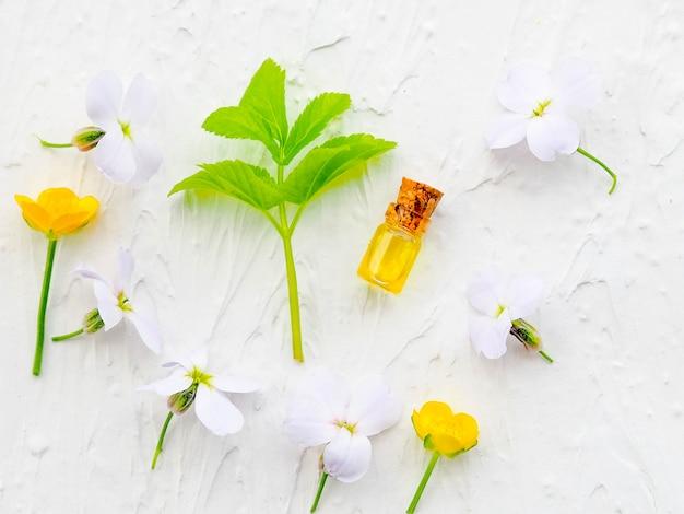 Bouteille d'huile essentielle à la sauge fraîche aux herbes, mise en place à plat sur une table en bois bleue. médecine alternative, santé, vitamines