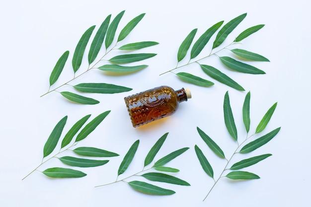 Bouteille d'huile d'eucalyptus avec des feuilles sur fond blanc.