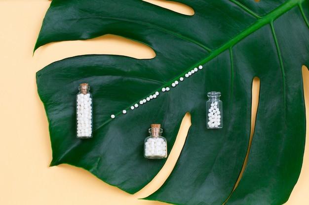 Bouteille avec des pilules homéopathiques sur feuille de palmier.