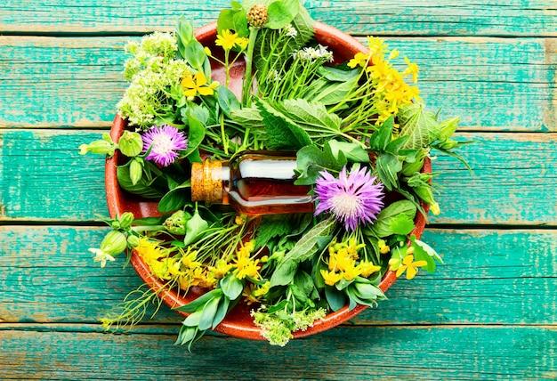 Bouteille de teinture de guérison d'herbes sauvages médicinales.phytothérapie.vue de dessus
