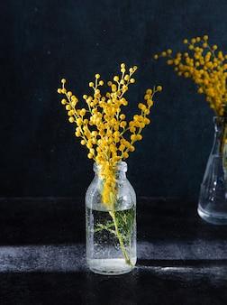 Bouteille en verre avec des fleurs de mimosa jaune
