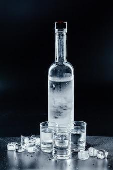 Bouteille de vodka froide sur l'obscurité