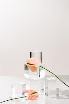Bouteilles d'huile aromatique essentielle sur fond blanc. soins de la peau en bonne santé. place pour le texte
