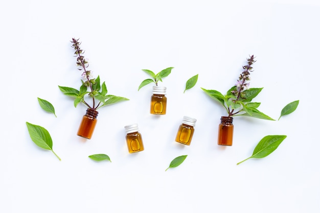 Bouteilles d'huile essentielle avec des feuilles de basilic frais et fleur sur blanc.