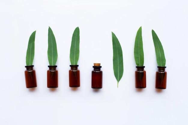 Bouteilles d'huile d'eucalyptus avec des feuilles sur blanc
