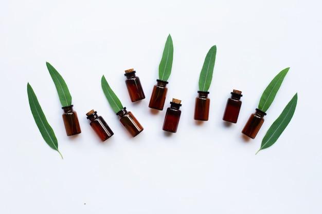 Bouteilles d'huile d'eucalyptus avec des feuilles d'eucalyptus sur blanc