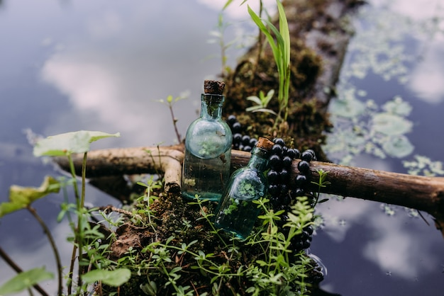 Les bouteilles en verre sont remplies d'ingrédients magiques élixir forêt mystérieuse