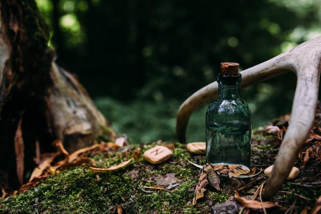 Les bouteilles en verre sont remplies d'ingrédients magiques potion forêt mystérieuse