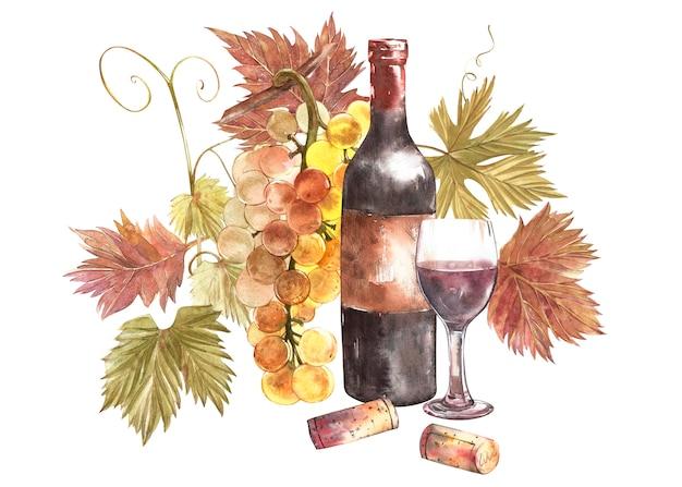 Bouteilles et verres de vin et assortiment de raisins