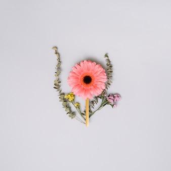 Bouton floral rose avec petites branches sur la table