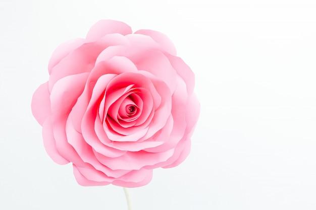 Bouton de rose décoratif sur fond blanc