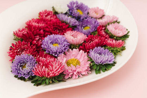 Boutons de fleurs de chrysanthème rose, rouge et violet flottant dans un bol blanc avec de l'eau sur fond rose. mise à plat naturelle minimale.