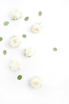 Boutons de fleurs roses blanches sur fond blanc. fat lay, vue de dessus