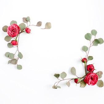 Boutons de fleurs roses rouges et branches d'eucalyptus isolés sur fond blanc. mise à plat, vue de dessus. fond floral