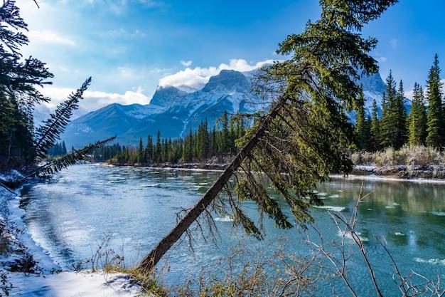 Bow river en journée ensoleillée d'hiver. chaîne de montagnes du mont rundle enneigées en arrière-plan.