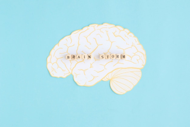 Brain storm blocs sur le cerveau blanc sur fond bleu