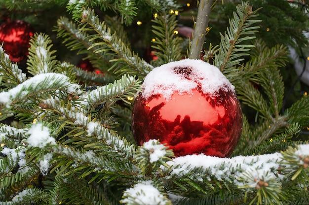 Branche d'arbre de noël dans la neige avec boule rouge