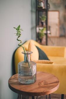 Une branche de bambou se tenant dans un vase transparent