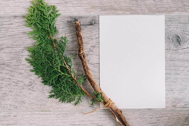 Branche de cèdre avec du papier blanc vierge sur fond texturé en bois