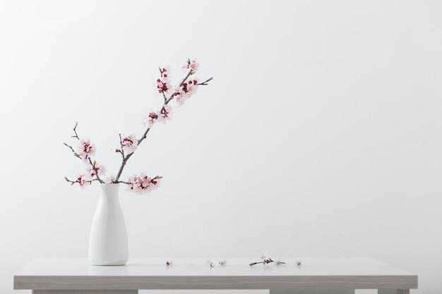 Branche de cerisier en fleurs dans un vase sur fond blanc