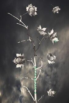Branche avec des feuilles de dollars contre les nuages. instabilité financière