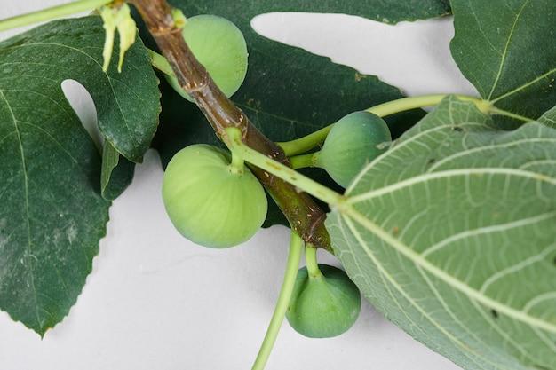 Une branche de figues vertes avec des feuilles sur blanc.