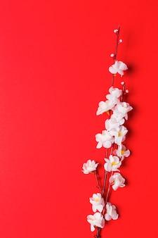 Branche de fleur de cerisier sur rouge