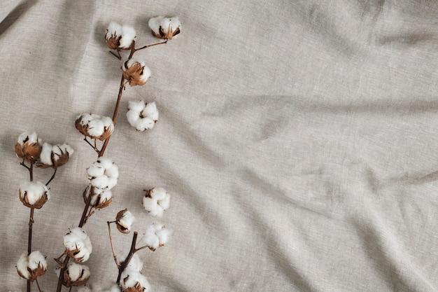 Branche de fleur de coton sur un fond texturé en tissu gris froissé
