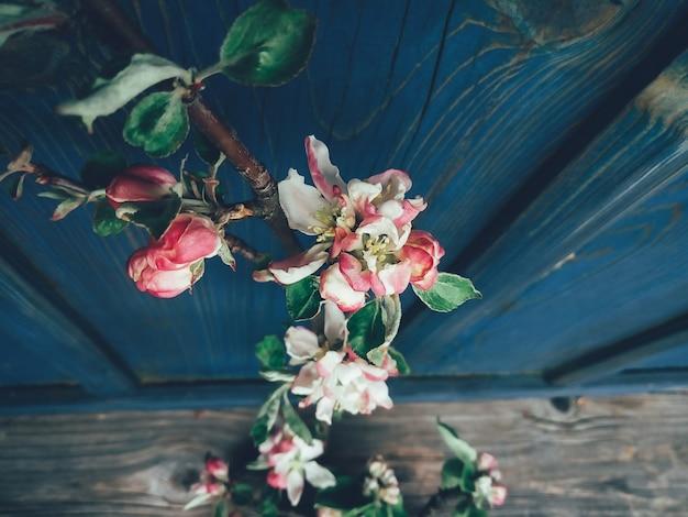 Branche de fleur de pommier bleu