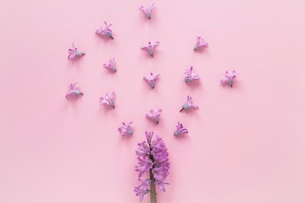 Branche de fleur pourpre à petits bourgeons