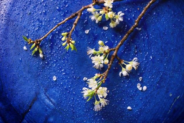 Branche de fleur