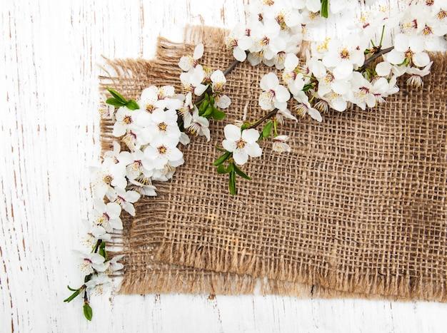 Branche de fleurs de cerisier et fond de toile de jute
