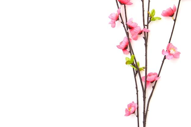 Branche fleurs de cerisier rose