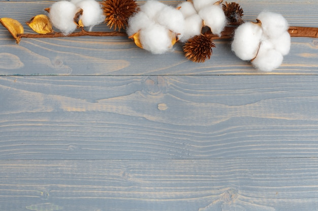 Branche de fleurs de coton sur fond en bois