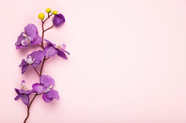 Branche de fleurs en fleurs copie espace