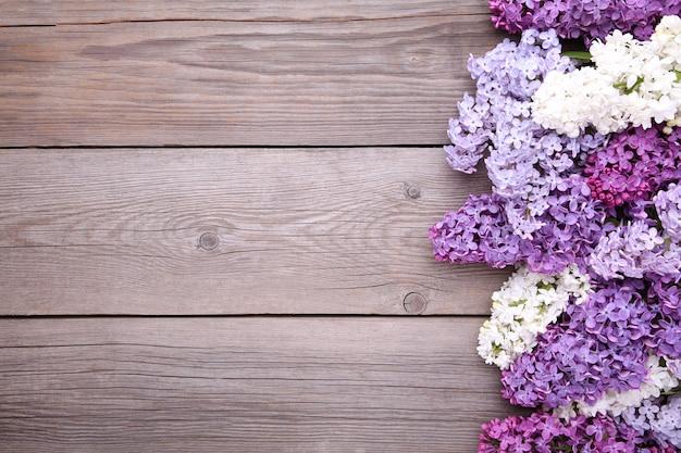 Branche de fleurs lilas sur fond gris avec fond