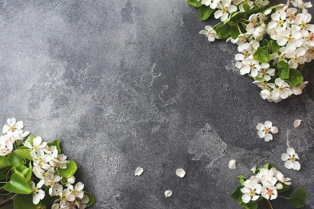 Branche florifère de printemps sur fond de béton gris