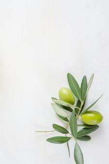 Branche d'olivier sur la table blanche avec espace de copie