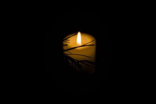 Branche de pin à la lumière d'une bougie allumée sur fond noir.