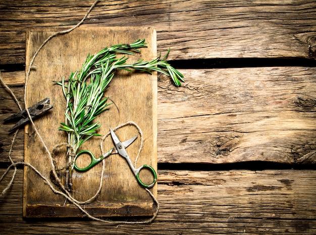 Branche de romarin épicé avec de vieux ciseaux sur une table en bois