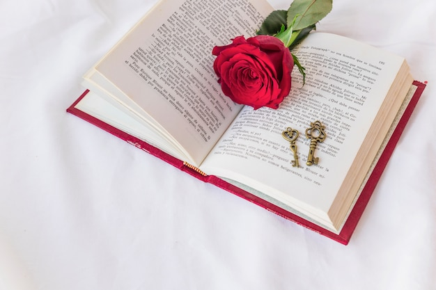Branche de rose rouge avec des clés sur le livre