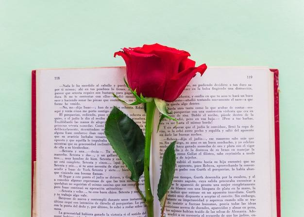 Branche de rose rouge sur un gros livre