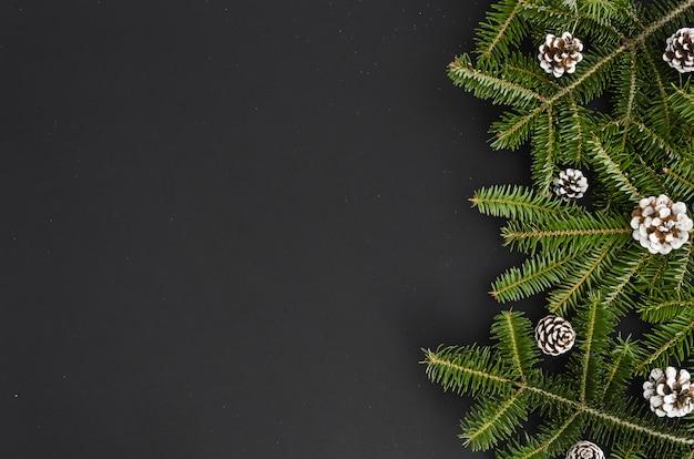 Branche de sapin de noël blanche peinte pomme de pin sur fond noir, bannière maquette xma