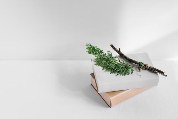 Branche de thuya sur des livres blancs et bruns sur fond