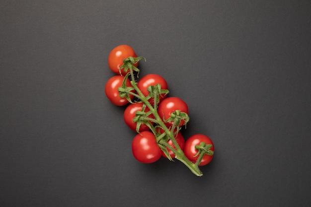 Branche de tomate isolée sur fond gris