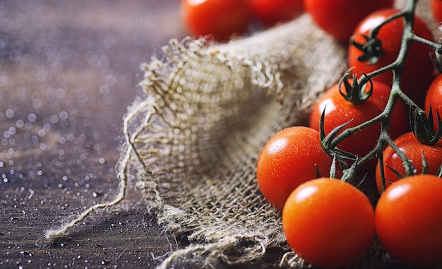 Branche avec des tomates cerises fraîches. tomates rouges mûres