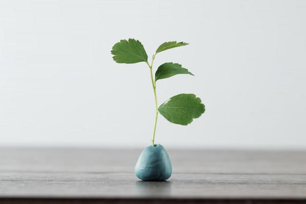 Branche verte, pousse sur une lumière