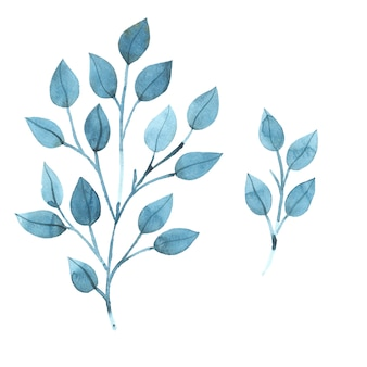 Branches aquarelles à feuilles bleues