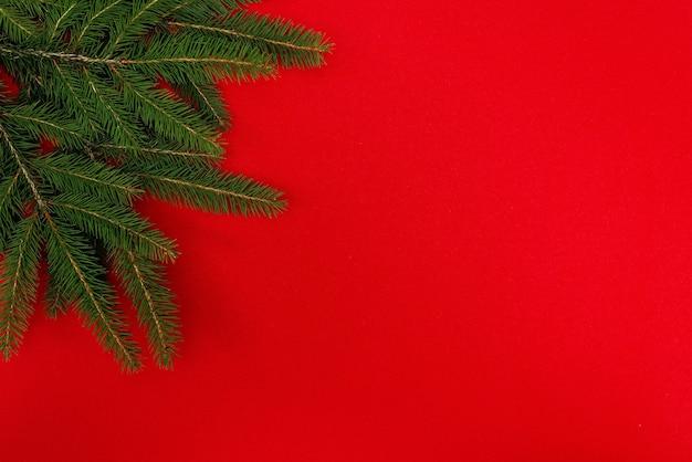 Branches d'un arbre de noël isolé sur un fond rouge.